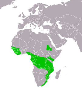 Crowned Eagle distribution range map