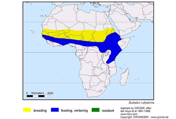 Grasshopper Buzzard distribution range map