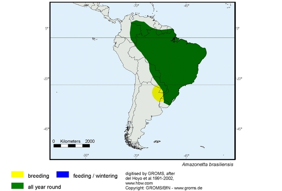 Brazilian Teal distribution range map