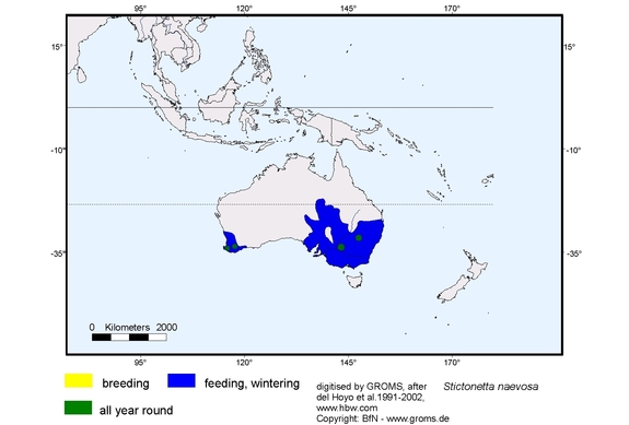 Freckled Duck distribution range map