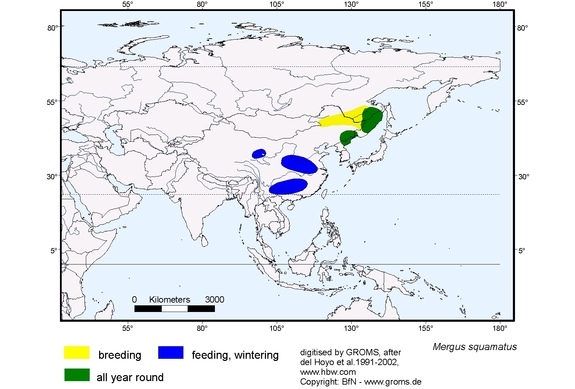 Scaly-sided Merganser distribution range map