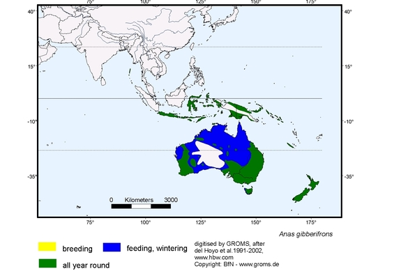 Sunda Teal distribution range map