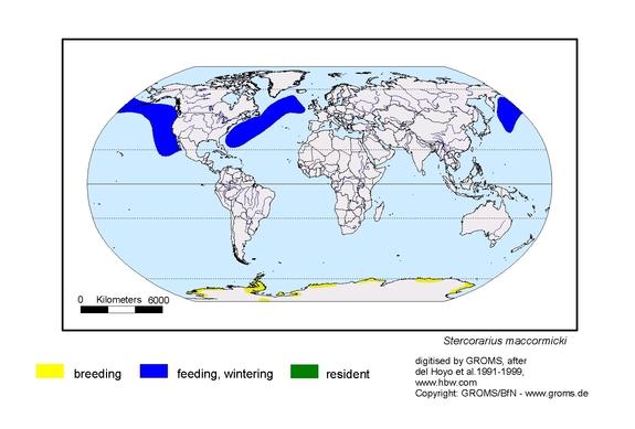 South Polar Skua distribution range map