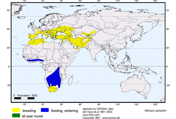 European Bee-eater distribution range map