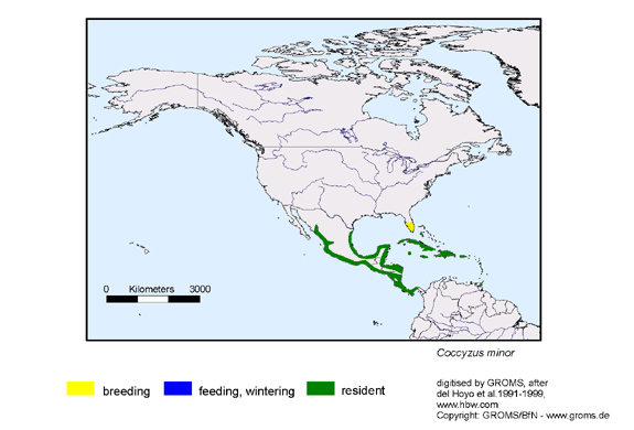 Mangrove Cuckoo distribution range map