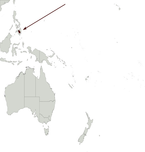 Mindanao Racket-tail distribution range map