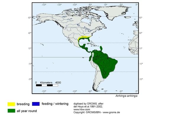 Anhinga range map